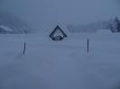 Schnee ..._6